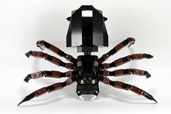 9470 - Downward Spider