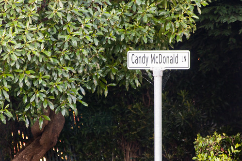 0000 Candy McDonald Lane