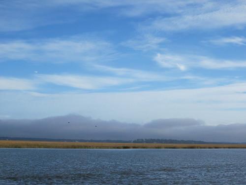 Fog bank along the shore