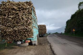 An Khe Pass - Vietnam 2012/13