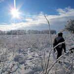 Manitoba Snowshoeing