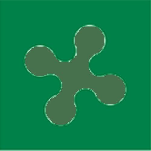 Logo_Regione-Lombardia_dian-hasan-branding_IT-11