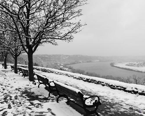 Eden Snow