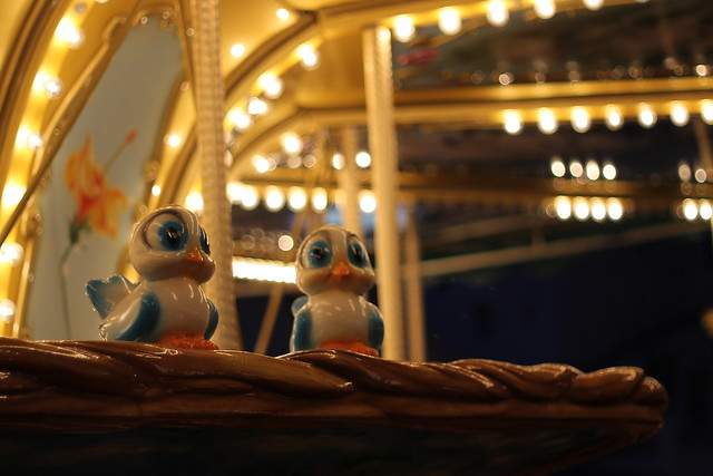 Lil' birdies on the Carousel