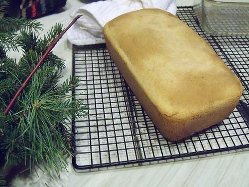 chowder white bread