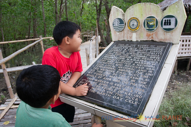Bakhawan Eco-Park-79.jpg