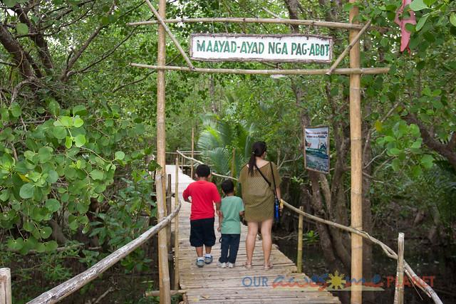 Bakhawan Eco-Park-6.jpg