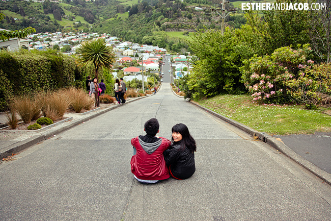Baldwin Street Dunedin World's steepest street | Day 2 New Zealand Contiki Tour | Lake Ohau to Dunedin | A Guide to South Island