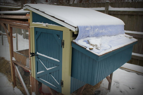 20121221. With all the wind, I blocked off one side of the coop's ventilation with a towel.