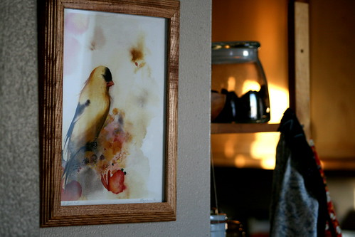 corners of home: kitchen bird