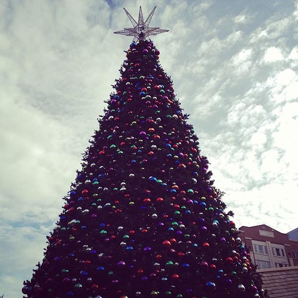 Atlanta Tree
