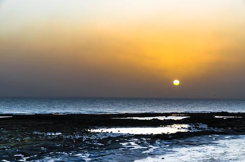Kuwaiti Sunrise (P365-12)