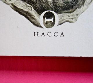 ESC. Quando tutto finisce, a cura di Rossano Astremo e Mauro Maraschi. Hacca edizioni 2012. Art dir., cover, logo design: Maurizio Ceccato | Ifix. Copertina (part.), 5