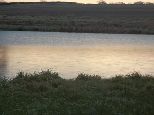 20121201-15_Cawston or Potfords Dam Pool_By Craig by gary.hadden