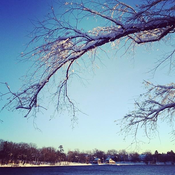 More pondside snow. #latergram