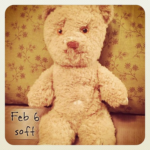 Feb 6 - soft {my old lamb's wool teddy bear from Germany; as old as I am and well loved} #fmsphotoaday #teddybear #childhood