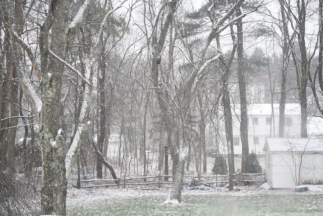 Christmas morning snow