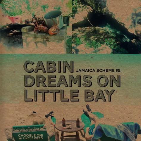 Cabin Dreams in Little Bay