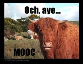 Och, aye...MOOC