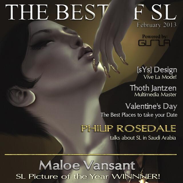 BOSL COVER FEBRUARY 2013