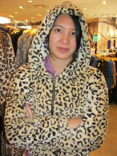 62 leopards