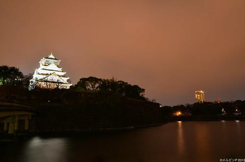 Osaka Castle (2013/02/07)