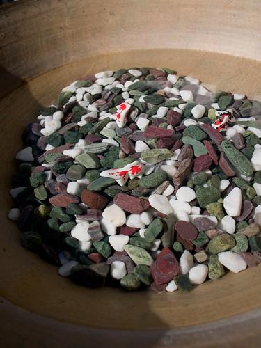 綺麗な小石