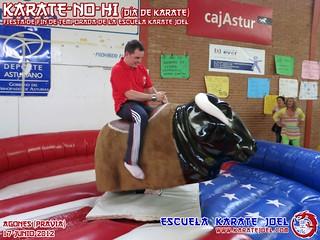 Toro Mecánino
