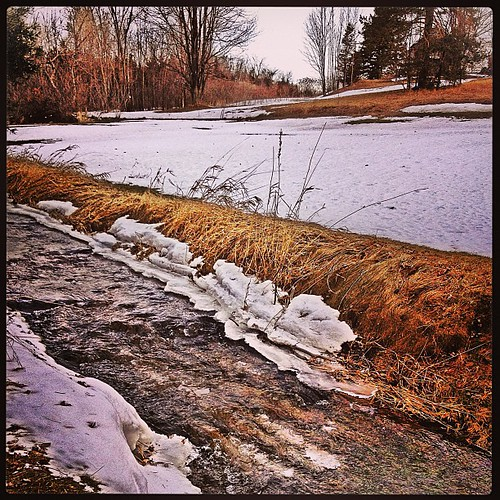 Mar 16 - 9 o'clock {AM and the ice jam from earlier this week is gone; the flooding has cleared; and all is well} #fmsphotoaday #princeedwardcounty