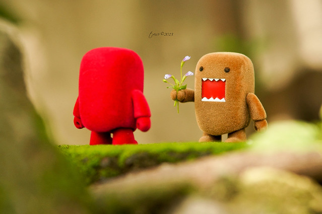 Domo gives flowers toy