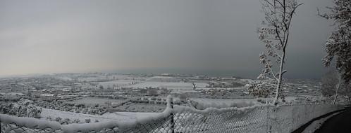 Snowy winter morning 22 feb 2013