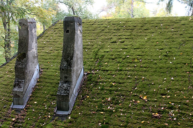 Roof in Transylvania