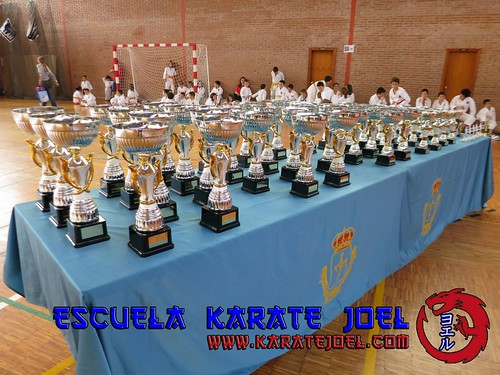 Copas del VII Trofeo Karate Escolar Villa de Pravia