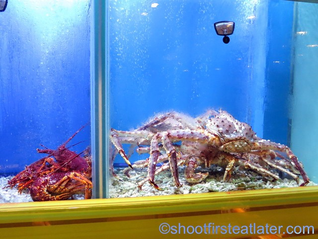 live lobster and king crab