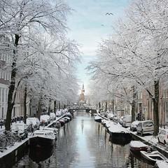 The frosty Bloemgracht of Amsterdam