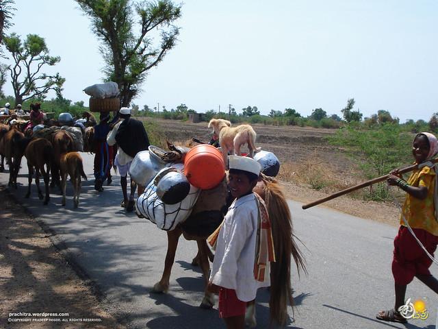 ರೋಣ-ಬಾದಾಮಿ ರಸ್ತೆಯಲ್ಲಿ ಕಂಡ ದೃಷ್ಯ...