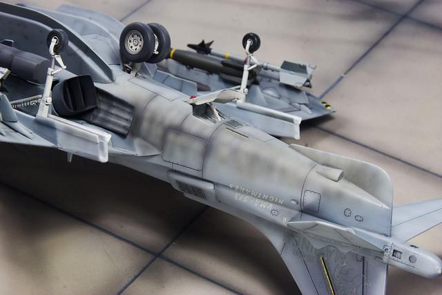 Harrier underside