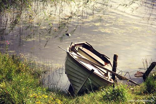 barque lac
