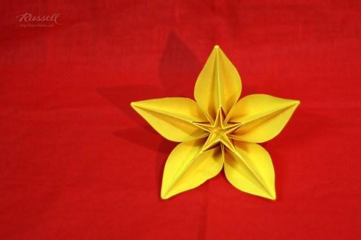 Origami Carambola