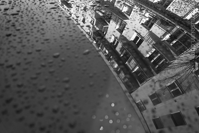 reflections on rooftop of car after rain fall
