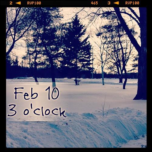 Feb 10 - 3 o'clock {...and all is well} #fmsphotoaday #snow #princeedwardcounty