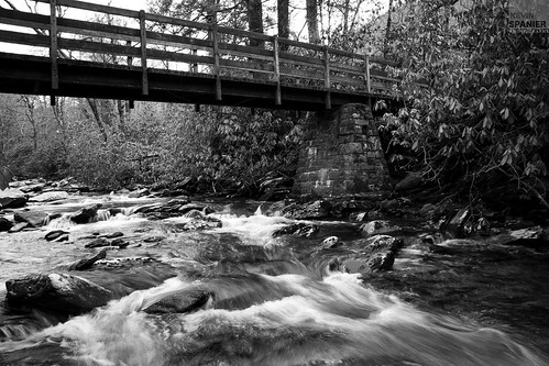 Gatlinburg by Spanier Photography