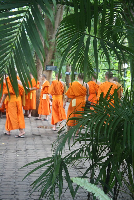 Thai Monk Chat in Chiang Mai, Thailand