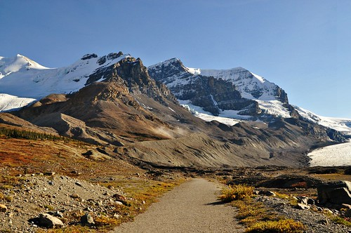 Trail by the Columbia Icefields