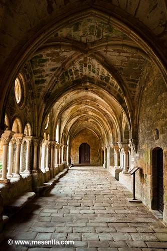 Claustre de l'abadia de Fontfroide