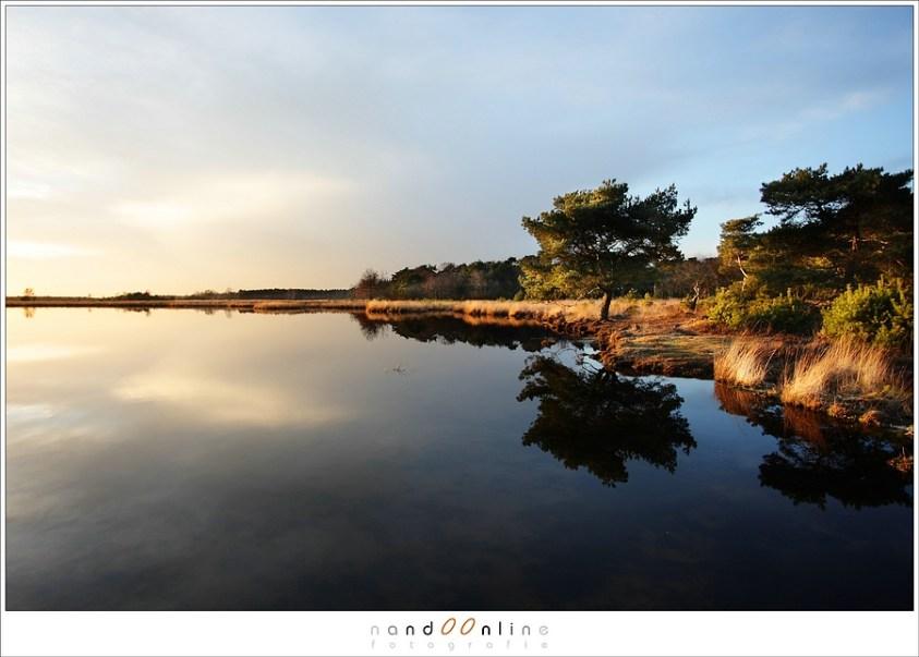 Nog meer beelden van de Strabrechtse Heide