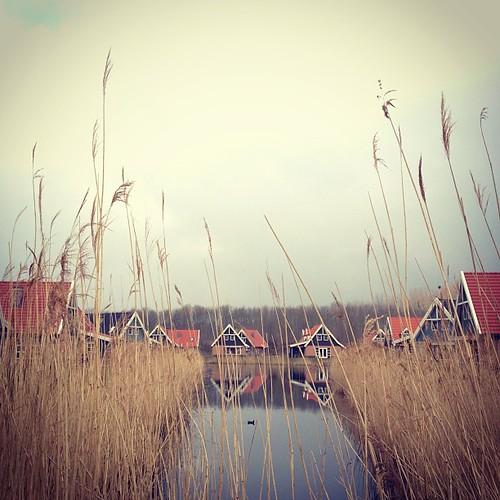 Huisje voor een week #flevoland
