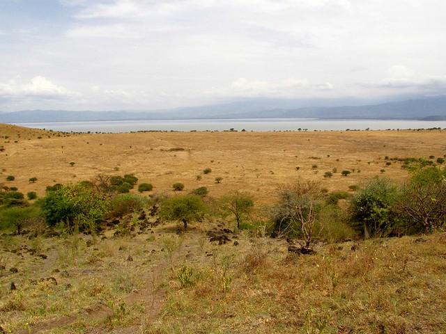 Llanuras del Nechisar y lago Chamo