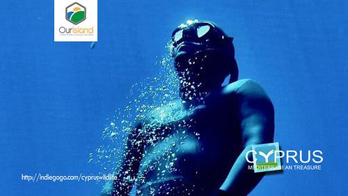 OurIsland #CyprusWildlife Treasured human potential on Film by kiprosopia