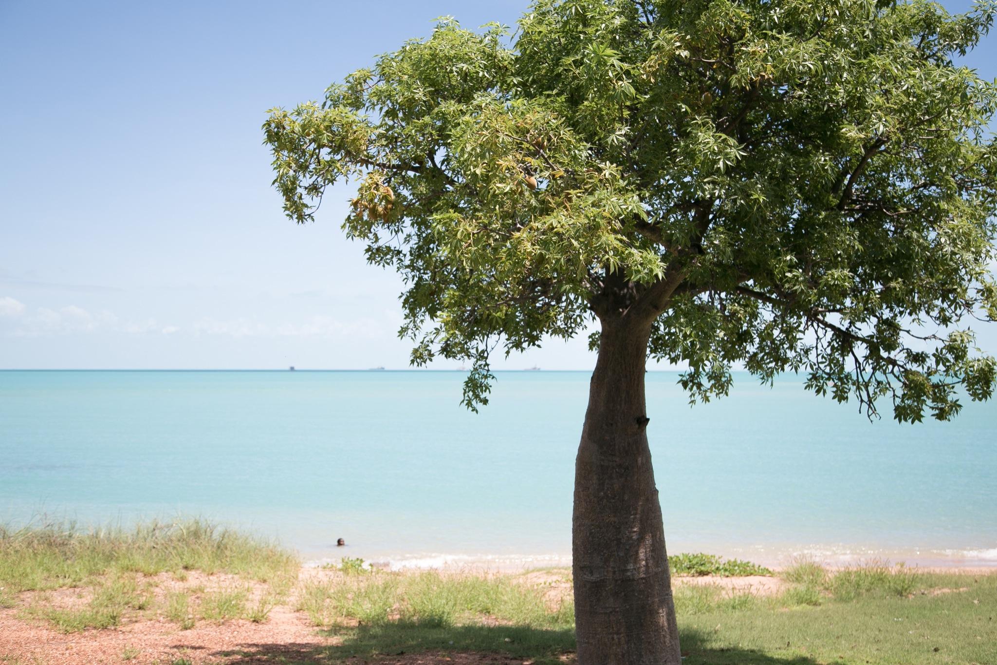 town-beach-6.jpg